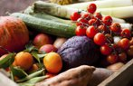 sebze meyve saglik beslenme domates salatalik mandalina