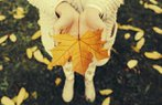 pudra pudrashop sonbahar yaprak doga