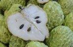 hint ayvasi meyve tropik