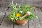 saglikli yasam zayiflatan sebzeler diyet kilo verme yesil bitkiler