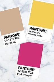pantone 2017 renk trendleri ilkbahar dik
