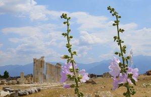 denizli anadolu nur basnur antik kent