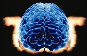 dr beyin mehmet yavuz kitap