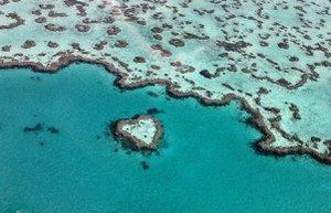 whitsundays avusturalya romantik evlilik tekif dunyanin en guzel sehir