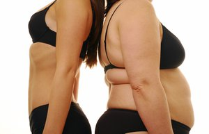 diyet obez sisman