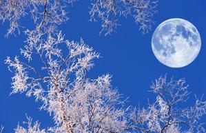dolunay kar astroloji kis ay
