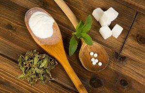 stevia stevya seker bitkisi otu