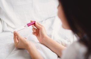 ovulasyon testi