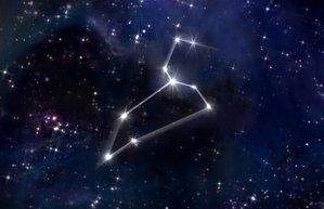 aslan burcu astroloji burclar burc yildizlari