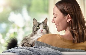 kedi tuyune alerjiye karsi mama liveclear couch 2156 ltd rt