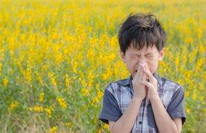 cocuklarda polen alerjisi cocuklarda bahar alerjileri