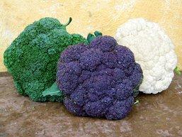 fal2007 broccoli vs cauliflower
