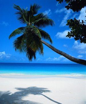 Ünlüler nerede ve nasıl tatil yapıyorlar? unlu tatil 1