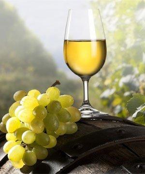Verona'da opera ve şarap beyaz sarap uzum 1