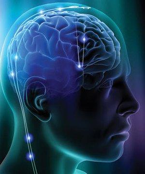 Hayatınızı organize etmek için beyninizi eğitmenin 3 yolu beyin 1