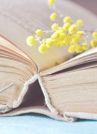 En ünlü aşk romanları