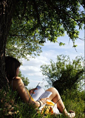 2015 yaz ayi okunacak kitaplar