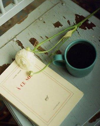 Sonbaharın en iyi yeni kitapları kitap kahve 1