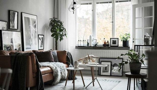 İskandinav stili ev dekorasyonunda bitki kullanımı