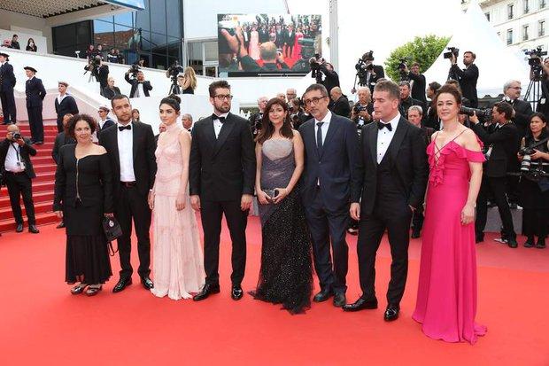 Ahlat Ağacı, Cannes, Gala