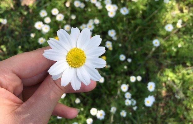 Güne mutlu başlamak için 5 küçük öneri